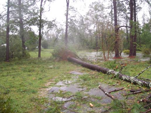 Hurricane Ivan photos